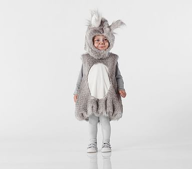 Woodland Squirrel Toddler Halloween Costume Pottery Barn