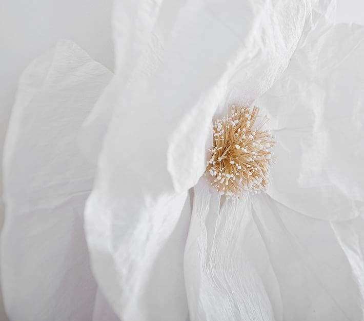 Jumbo Crepe White Paper Flowers Set Of 2 Kids Wall Decor