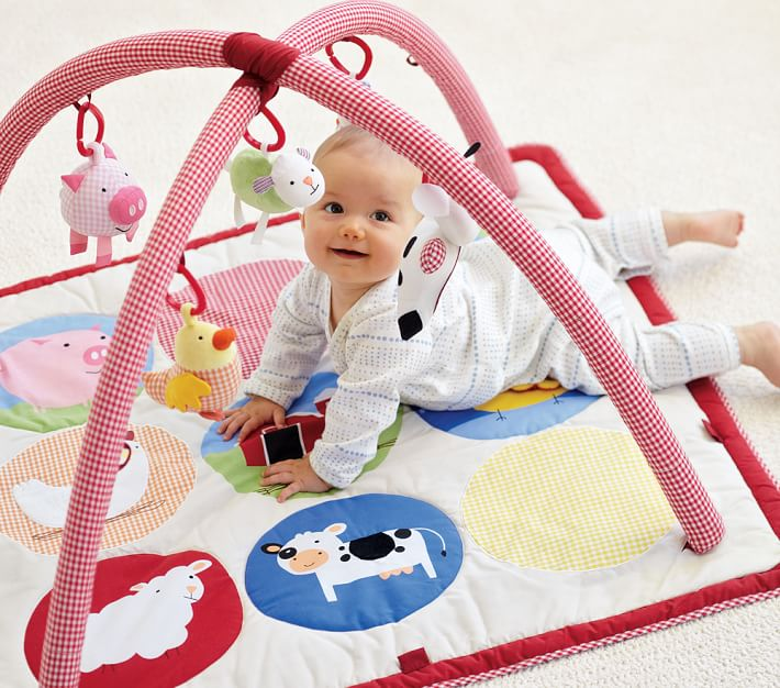 Skip Hop Farmyard Baby Activity Gym Baby Toy Pottery