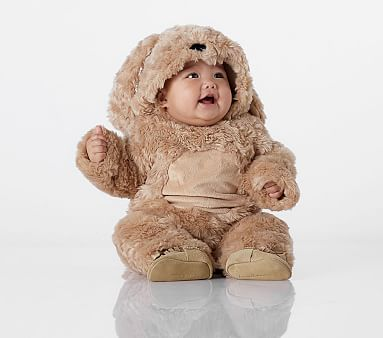 Baby Dog Costume Pottery Barn Kids