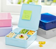 Potterybarn All-in-one Recycled Bento Box